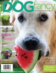 DogFancy Cover 1a.1
